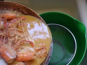 shrimp 009