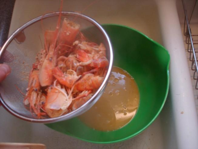 shrimp 011